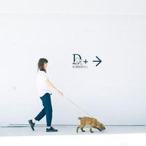 【D+KIRISHIMA】「スタイリッシュに愛犬と旅行なんてかっこいい」