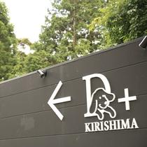 【D+KIRISHIMA】「スタイリッシュに愛犬と旅行なんてカッコいい。」