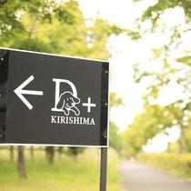 【D+KIRISHIMA】愛犬と一緒だからこそ寛げる。