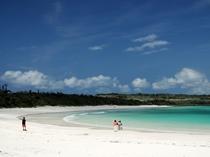白砂がまぶしい渡口の浜はアマカから2km。海水浴にもってこいです。