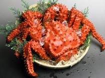 花咲蟹(一例)