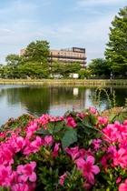 季節の花々とハナホテル♪