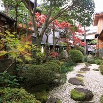 客室から見える日本庭園です。