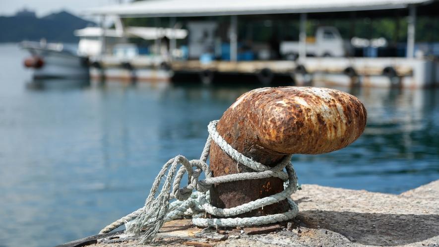 【福良漁港】のんびり漁港周辺の散策もおすすめ(徒歩15分)