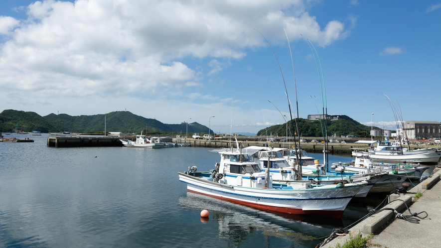 【福良漁港】一本釣り漁、はえなわ漁、ちりめん漁が主流(徒歩15分)