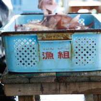 【福良漁港】鳴門海峡の渦潮に揉まれた良質の魚介類が日々水揚げされる(徒歩15分)