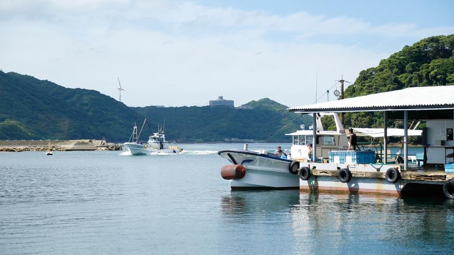 【福良漁港】毎月第4日曜はうずしお朝市が開催。魚のトロ箱が並び、鮮魚が格安で買えます(徒歩15分)