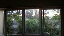 西の窓辺 、 海への小階段