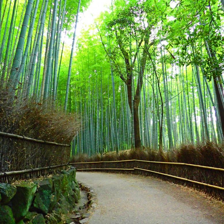 ◆嵐山まで阪急京都線「烏丸」「桂」阪急嵐山線「嵐山」20分