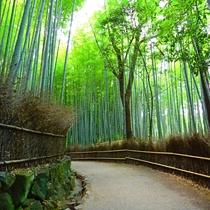 ◆嵐山まで阪急京都線「烏丸」→「桂」→阪急嵐山線「嵐山」20分