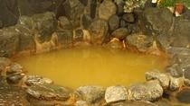*【温泉】天然化学成分を含んだ、沼津唯一の天然イオン温泉!