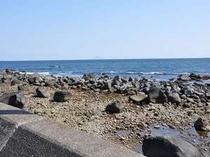 晴れている日は海がキラキラ☆