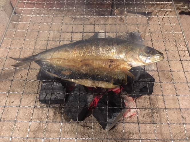 炭火焼(イワシの干物)