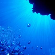 【沖縄の海で体験ダイビング】※イメージ