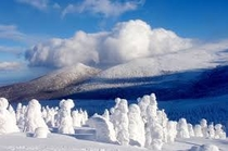 Snow Monster 雪上車で行く冬の定番
