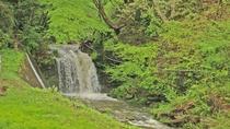 敷地内には宿名由来の滝