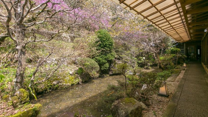 庭には山より引き込みました水にて池がございます。