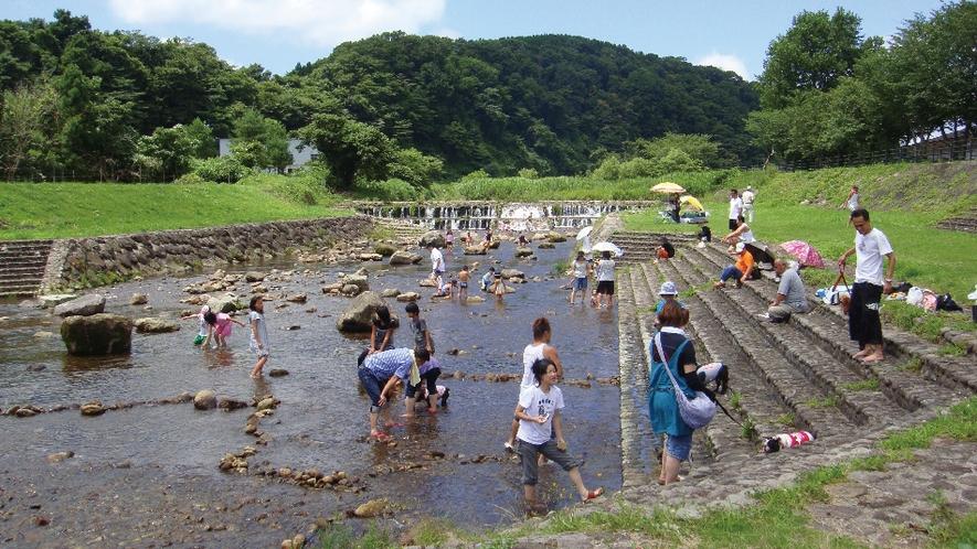 【周辺情報】川上河川公園(当コテージから車で5分)