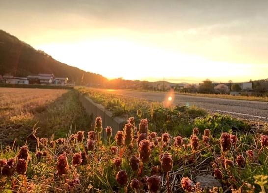 【秋冬旅セール】ポイント10倍!豊かな自然と歴史空間、美食を堪能する田園リゾート<フリーラウンジ付>