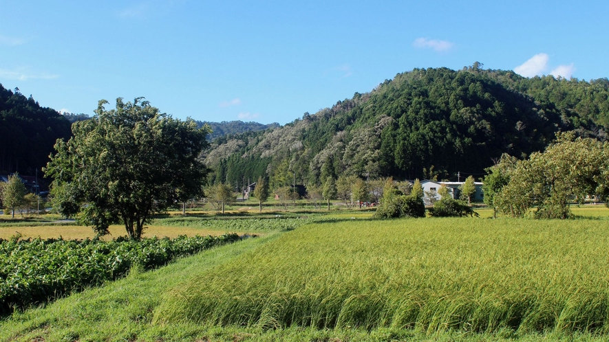 【周辺】田畑の奥にはゆるやかに山が連なる風景と共に風、音、匂いを愉しんで。
