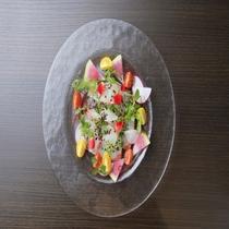 彩鮮やか冬の鮮魚のカルパッチョ~極~