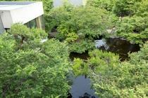 3階VIPルームからの日本庭園