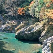 【周辺観光】穴吹川(秋になると山々が紅・黄・橙に色を染めます)