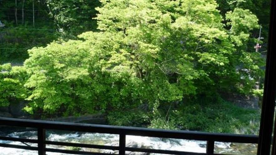 新緑の頃。木曽川眺望のお部屋からの眺め。