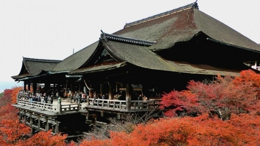 清水寺の紅葉は例年11月下旬~12月上旬が見頃