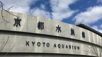 【京都水族館】当ホテルよりJR利用(山科駅→京都駅→梅小路京都西駅)で約15分という好アクセス