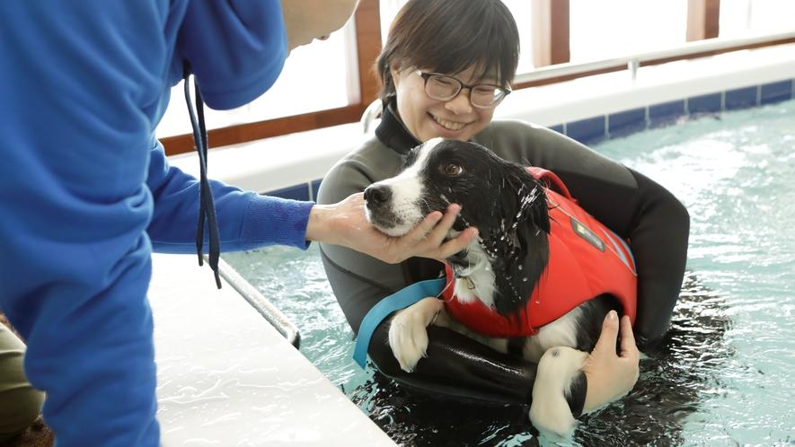 【ドッグフィットネス】水の浮力により体がリラックスすると共に運動時の関節への負担が和らぎます