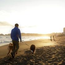 【ホテル前の海辺】ゆったりとした時間を共にすごすと、絆が深まっていくような気がする