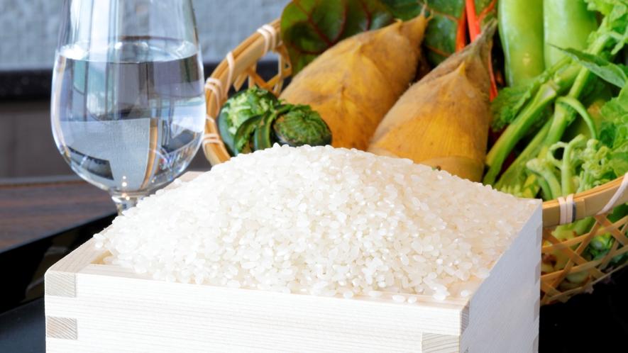 ご飯は鴨川でしか栽培されていない長狭米を使用
