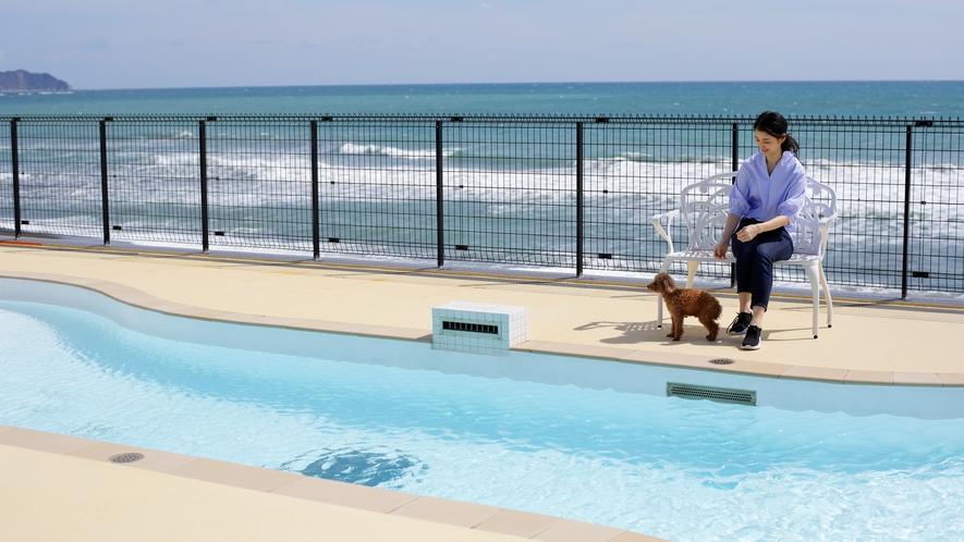 海辺のプールで愛犬とゆったりしたリゾートタイムを
