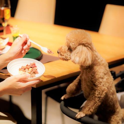 【わんちゃんのお食事】レストランではカートにのせて一緒にお食事を