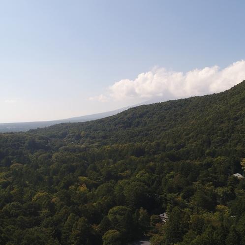 【周辺の様子】山に囲まれた静かな土地です