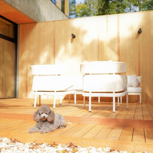 【ドッグラン】お洒落な椅子とウッドデッキの休憩スペース