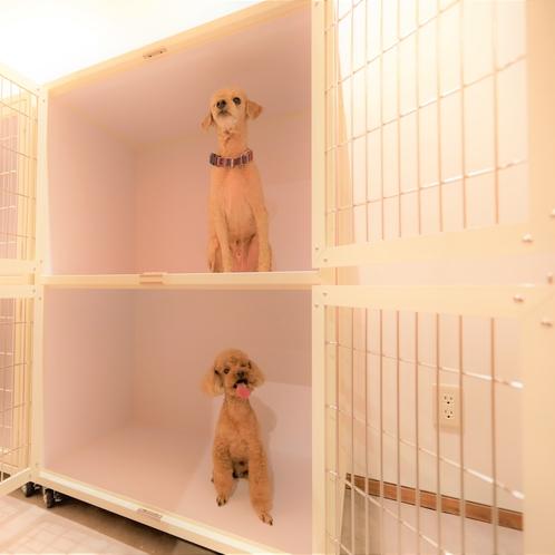 【愛犬お預り所】基本は有料ですが、朝食時、夕食時などの一時的なお預かりは無料です