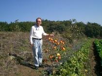 柿と柿農園副代表