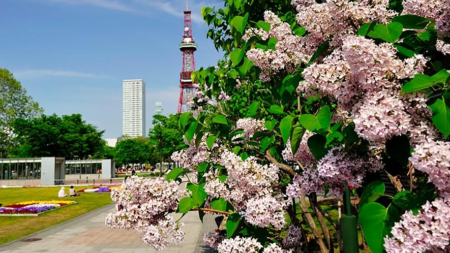 【観光】大通り公園
