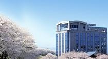 春の桜並木と外観