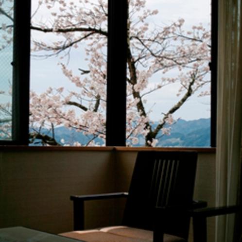 【別館 角部屋】満開の桜を見ながら、お食事…夜桜も楽しめる!