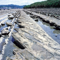 *鬼の洗濯岩。潮が引くと、磯遊びが楽しめます。