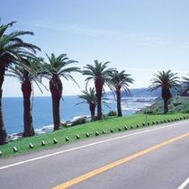 *堀切峠・日南海岸。堀切峠から見下ろす太平洋の景観は絶景です。