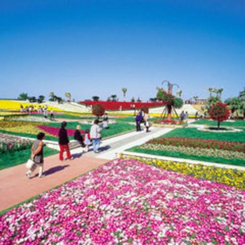 *「こどものくに」青島で開催されるフラワーフェスタ。色鮮やかなお花に感動!