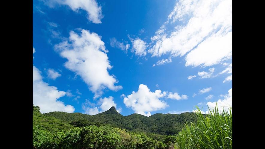 【野底マーペー】二人で登ると恋が叶う、といわれる20分ほどで登ることができる山です