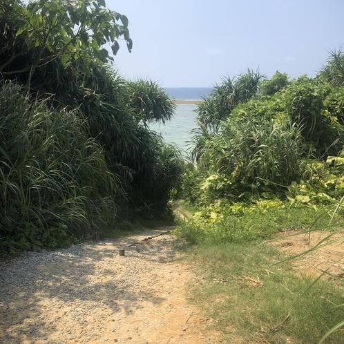 ビーチへの道