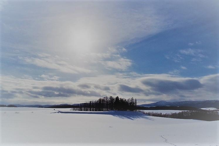 冬の美瑛の丘