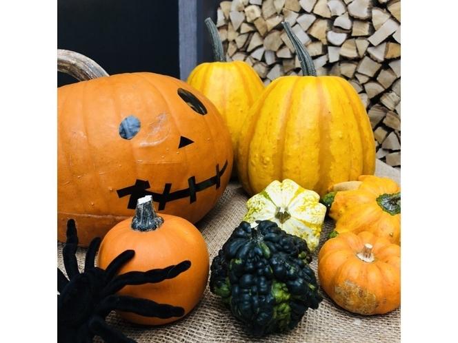 ハロウィン ニセコ産おもちゃかぼちゃ