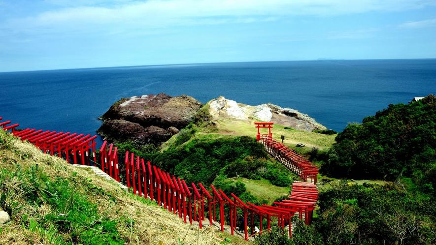 元乃隅神社。123基の赤い鳥居と海のコントラストが美しいパワースポット。(ホテルから車約50分)